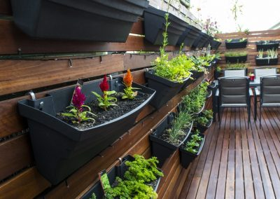 Spotted Gum Screening & Deck, Tusmore